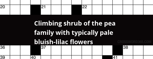 Climbing Shrub Of The Pea Family With