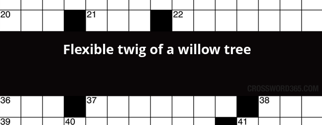 twig of a willow tree crossword clue
