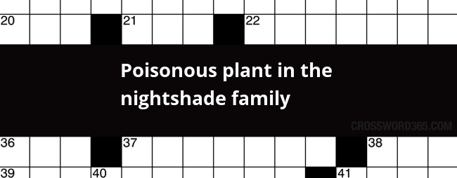 Poisonous Plant In The Nightshade Family Crossword Clue