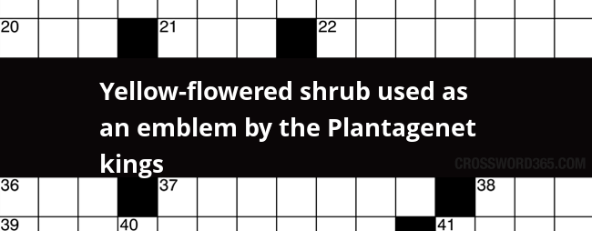 Yellow flowered shrub used as an emblem by the plantagenet kings below you will be able to find the answer to yellow flowered shrub used as an emblem by the plantagenet kings crossword clue which was last mightylinksfo